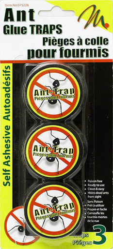 Picture of Ant Trap 3Pk Plastic - No 075228
